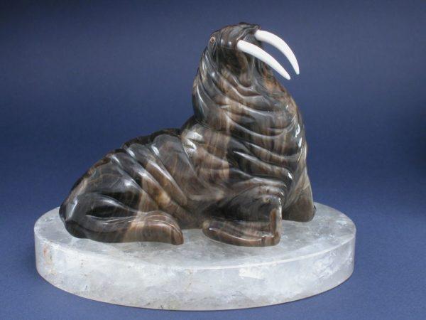 Морж на льдине 054