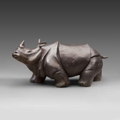 Носорог мечтательный