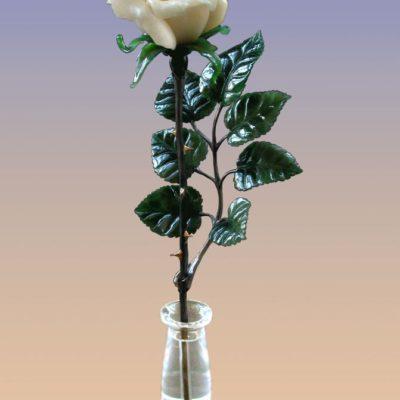 Роза белая 035